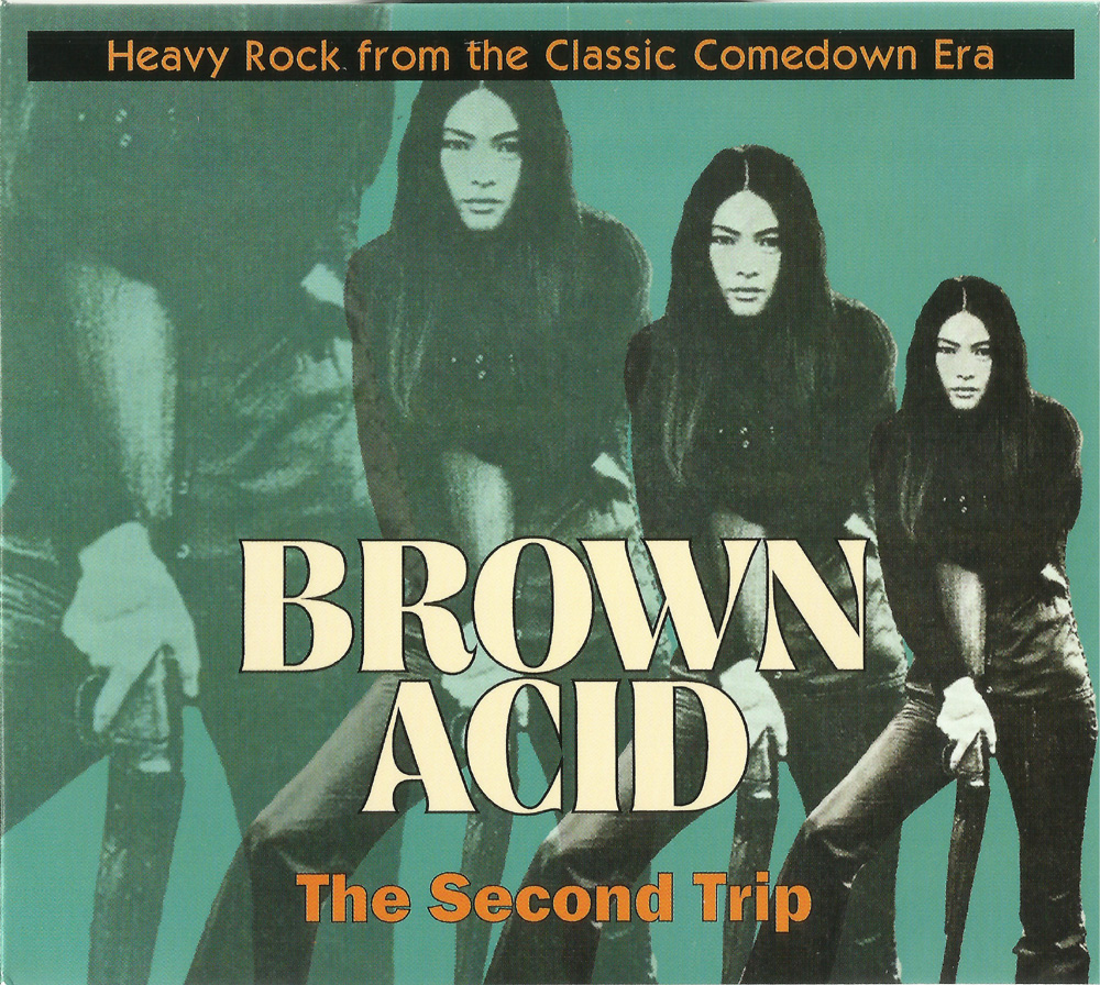 LP/CD/CS - Various Artists - Brown Acid: The Second Trip - Heavy Rock From  The American Comedown Era